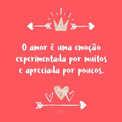 O amor é uma emoção experimentada por muitos e apreciada por poucos.