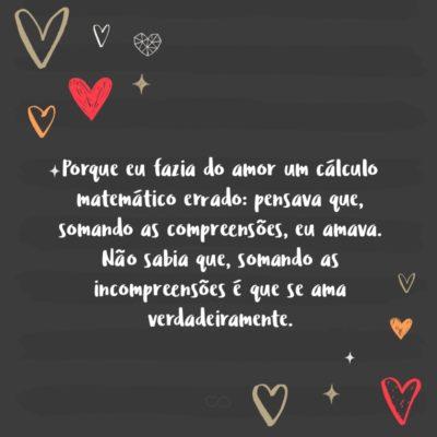 Porque eu fazia do amor um cálculo matemático errado: pensava que, somando as compreensões, eu amava. Não sabia que, somando as incompreensões é que se ama verdadeiramente.