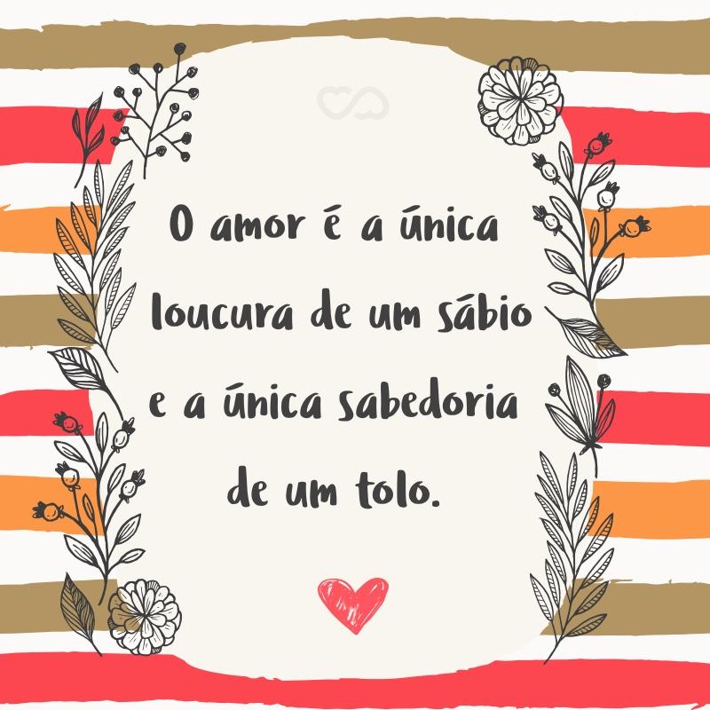 Frase de Amor - O amor é a única loucura de um sábio e a única sabedoria de um tolo.