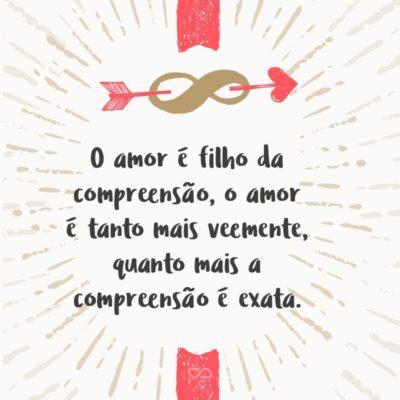 Frase de Amor - O amor é filho da compreensão, o amor é tanto mais veemente, quanto mais a compreensão é exata.