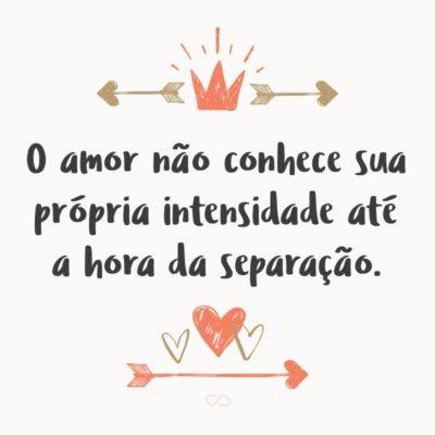 Frase de Amor - O amor não conhece sua própria intensidade até a hora da separação.