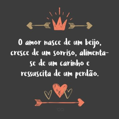 Frase de Amor - O amor nasce de um beijo, cresce de um sorriso, alimenta-se de um carinho e ressuscita de um perdão.