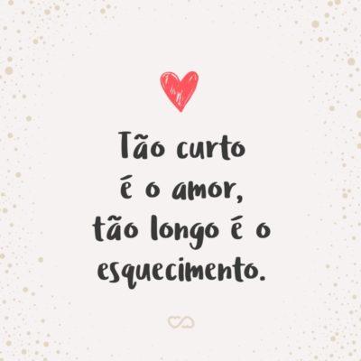 Frase de Amor - Tão curto é o amor, tão longo é o esquecimento.