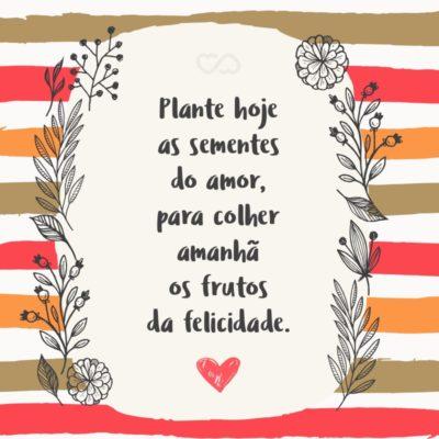 Frase de Amor - Plante hoje as sementes do amor, para colher amanhã os frutos da felicidade.
