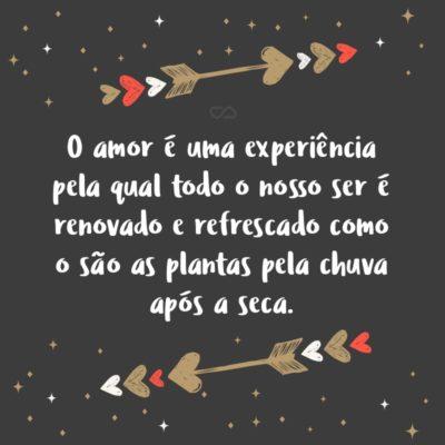 Frase de Amor - O amor é uma experiência pela qual todo o nosso ser é renovado e refrescado como o são as plantas pela chuva após a seca.