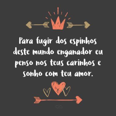 Frase de Amor - Para fugir dos espinhos deste mundo enganador eu penso nos teus carinhos e sonho com teu amor.