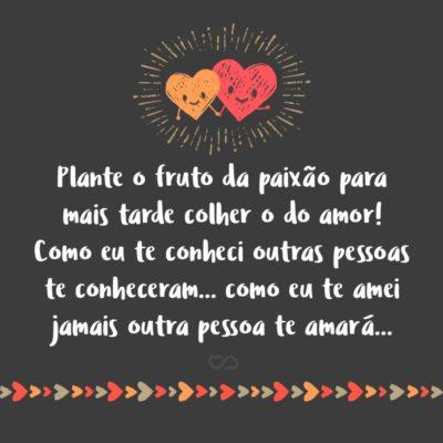 Frase de Amor - Plante o fruto da paixão para mais tarde colher o do amor! Como eu te conheci outras pessoas te conheceram… como eu te amei jamais outra pessoa te amará…