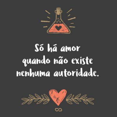 Frase de Amor - Só há amor quando não existe nenhuma autoridade.