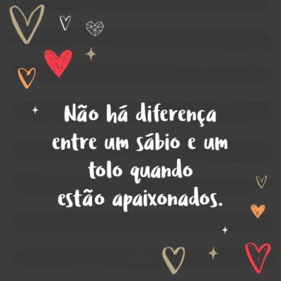 Frase de Amor - Não há diferença entre um sábio e um tolo quando estão apaixonados.