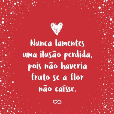 Frase de Amor - Nunca lamentes uma ilusão perdida, pois não haveria fruto se a flor não caísse.