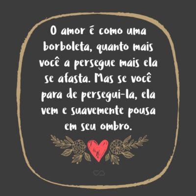 Frase de Amor - O amor é como uma borboleta, quanto mais você a persegue mais ela se afasta. Mas se você para de persegui-la, ela vem e suavemente pousa em seu ombro.