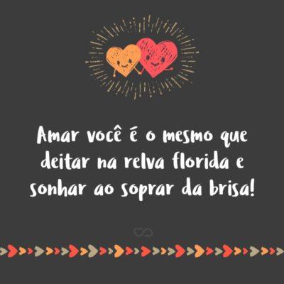 Frase de Amor - Amar você é o mesmo que deitar na relva florida e sonhar ao soprar da brisa!
