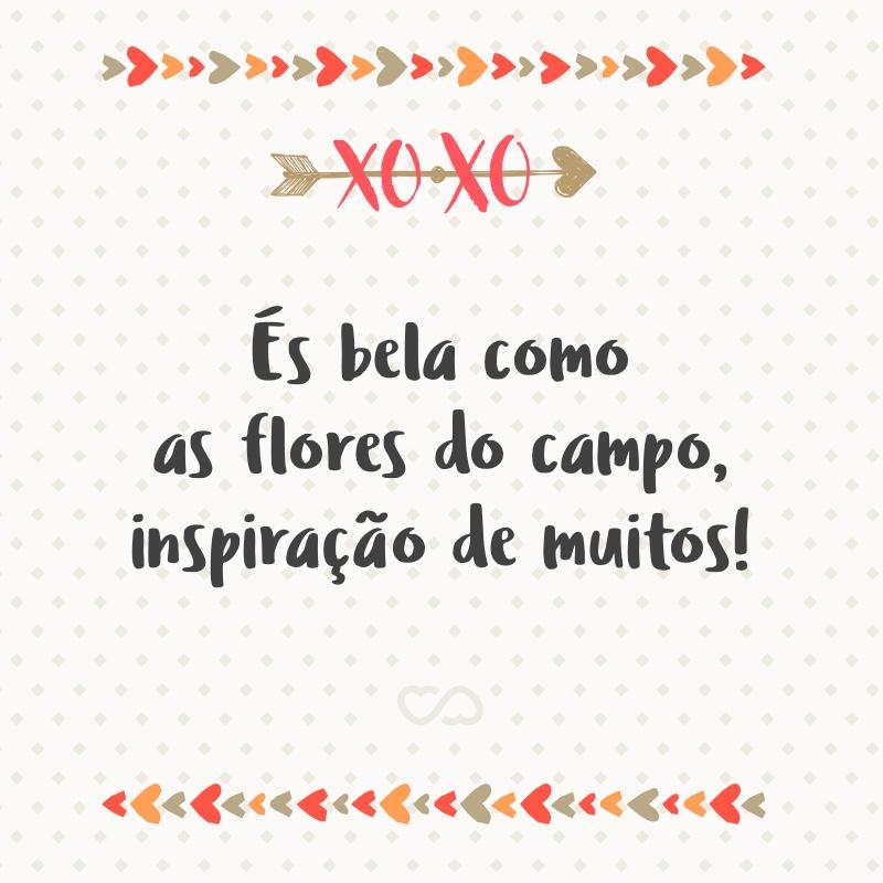 Frase de Amor - És bela como as flores do campo, inspiração de muitos!