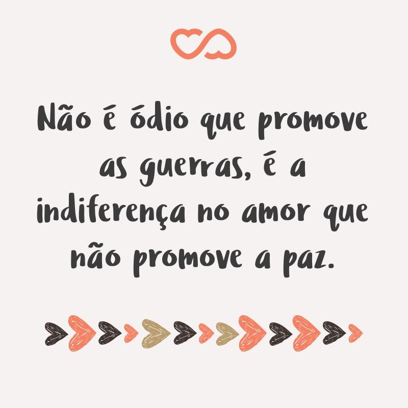 Frase de Amor - Não é ódio que promove as guerras, é a indiferença no amor que não promove a paz.