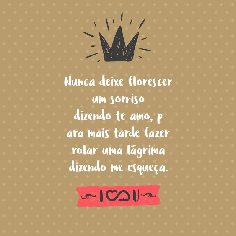 Frase de Amor - Nunca deixe florescer um sorriso dizendo te amo, para mais tarde fazer rolar uma lágrima dizendo me esqueça.