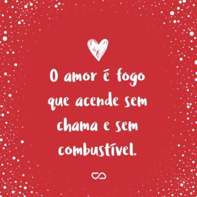 Frase de Amor - O amor é fogo que acende sem chama e sem combustível.