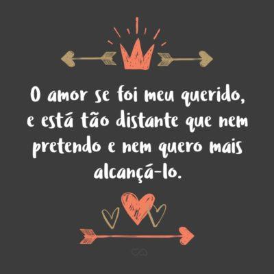 Frase de Amor - O amor se foi meu querido, e está tão distante que nem pretendo e nem quero mais alcançá-lo.