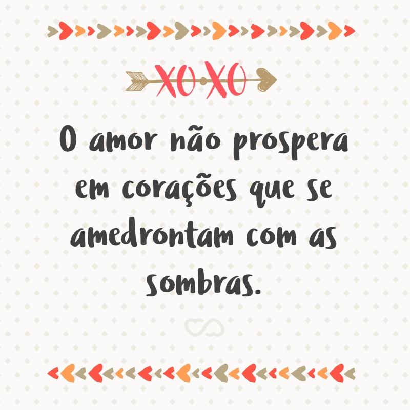 Frase de Amor - O amor não prospera em corações que se amedrontam com as sombras.