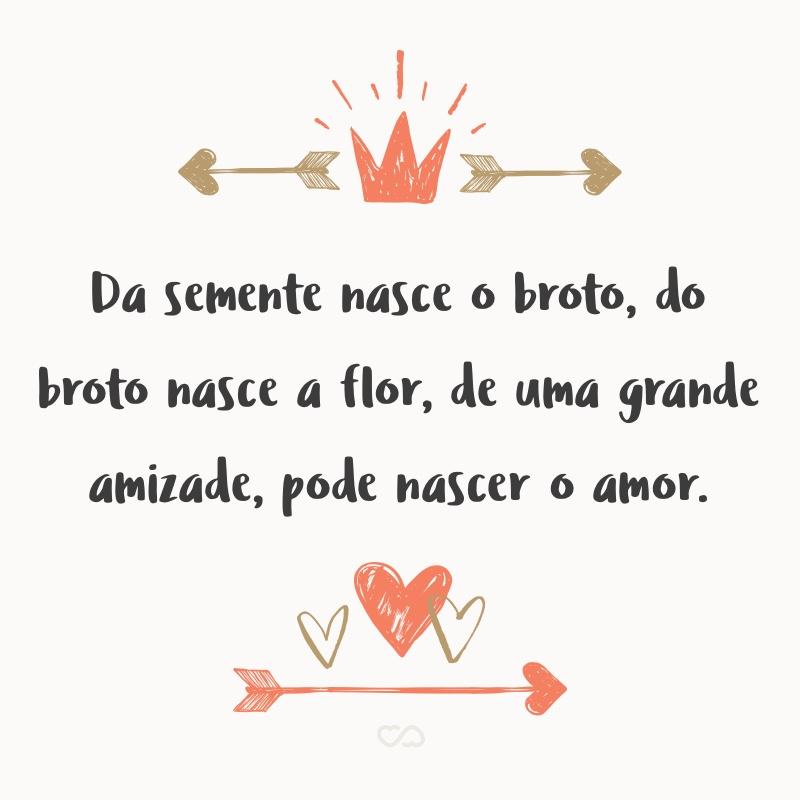 Frase de Amor - Da semente nasce o broto, do broto nasce a flor, de uma grande amizade, pode nascer o amor.