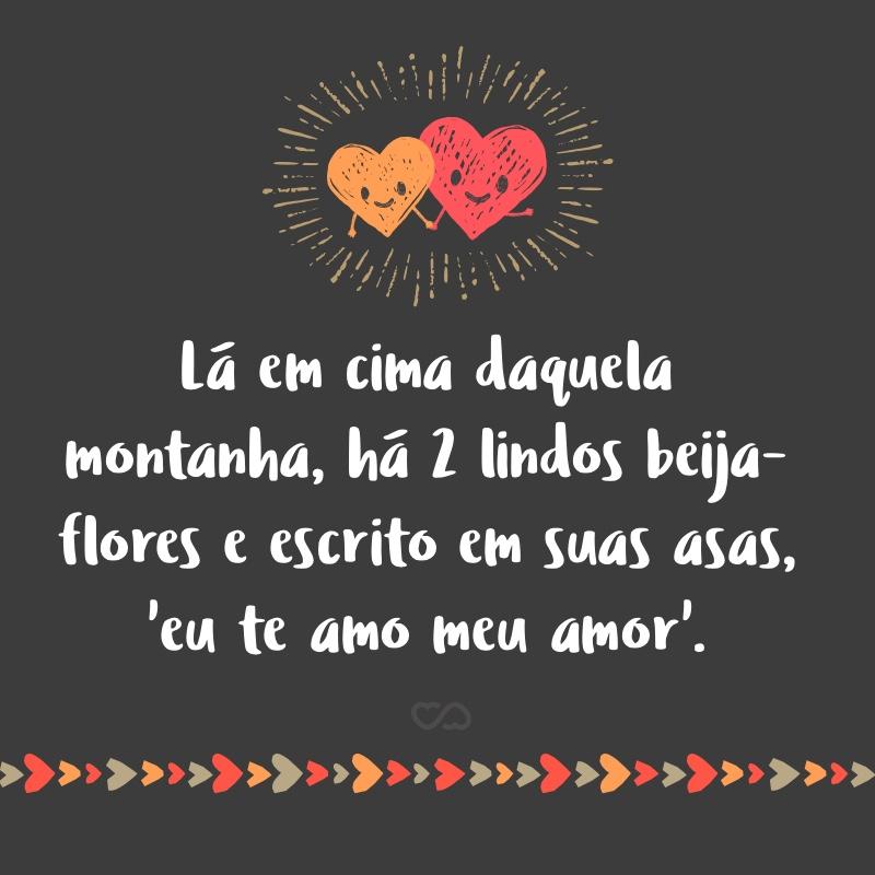 Frase de Amor - Lá em cima daquela montanha, há 2 lindos beija-flores e escrito em suas asas, 'eu te amo meu amor'.
