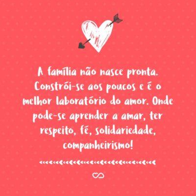 Frase de Amor - A família não nasce pronta. Constrói-se aos poucos e é o melhor laboratório do amor. Onde pode-se aprender a amar, ter respeito, fé, solidariedade, companheirismo e outros sentimentos!