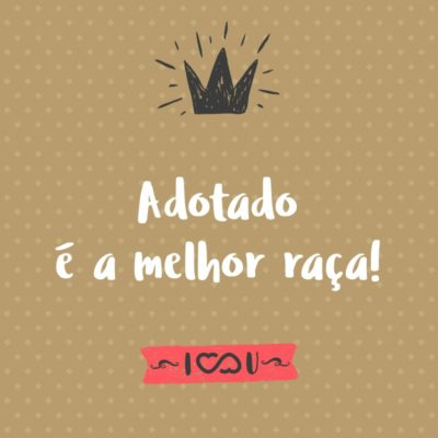 Frase de Amor - Adotado é a melhor raça!