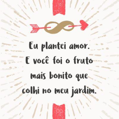 Frase de Amor - Eu plantei amor. E você foi o fruto mais bonito que colhi no meu jardim.