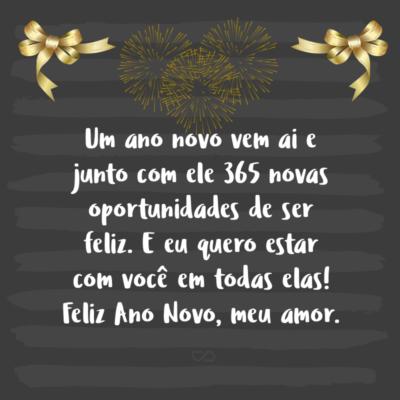 Frase de Amor - Um ano novo vem ai e junto com ele 365 novas oportunidades de ser feliz. E eu quero estar com você em todas elas! Feliz Ano Novo, meu amor.