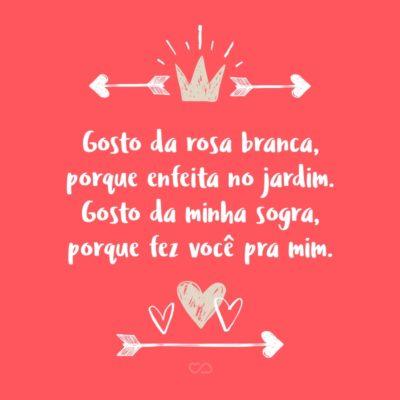 Frase de Amor - Gosto da rosa branca, porque enfeita no jardim. Gosto da minha sogra, porque fez você pra mim.