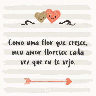 Frase de Amor - Como uma flor que cresce, meu amor floresce cada vez que eu te vejo.
