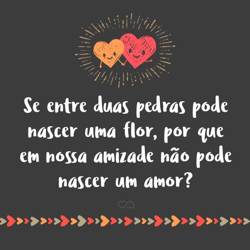 Frase de Amor - Se entre duas pedras pode nascer uma flor, por que em nossa amizade não pode nascer um amor?
