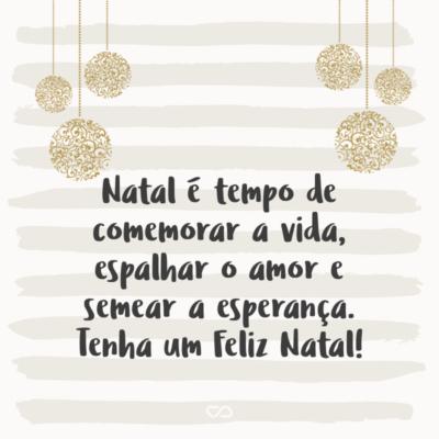 Frase de Amor - Natal é tempo de comemorar a vida, espalhar o amor e semear a esperança. Tenha um Feliz Natal!