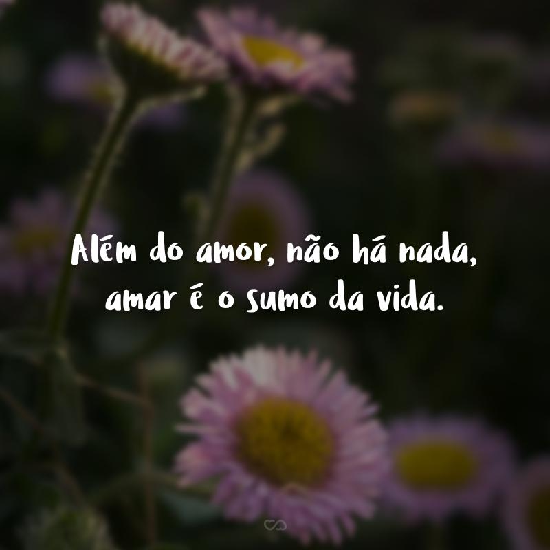 Além do amor, não há nada, amar é o sumo da vida.