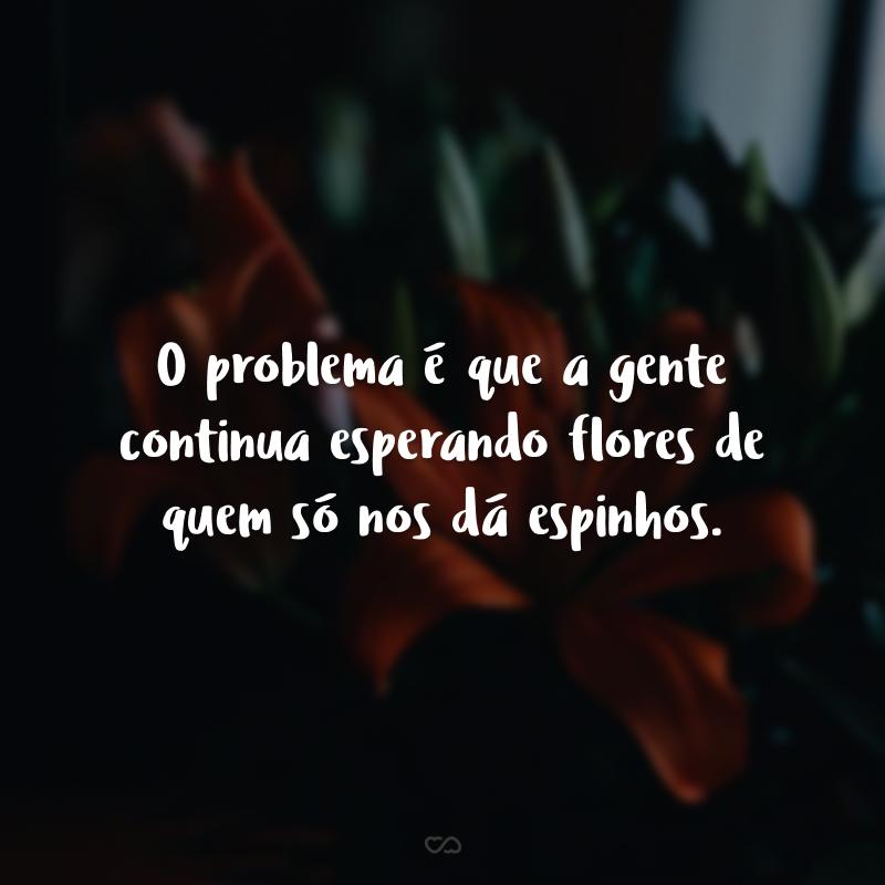 O problema é que a gente continua esperando flores de quem só nos dá espinhos.