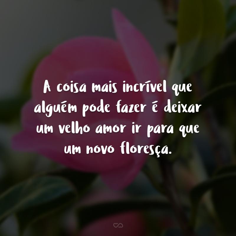 A coisa mais incrível que alguém pode fazer é deixar um velho amor ir para que um novo floresça.