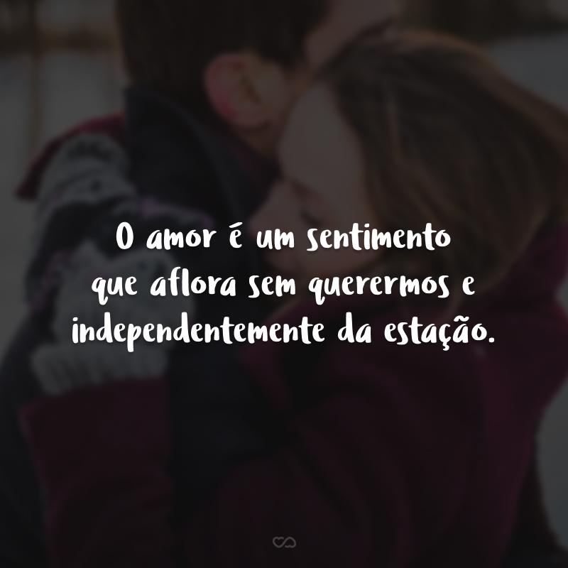 O amor é um sentimento que aflora sem querermos e independentemente da estação.
