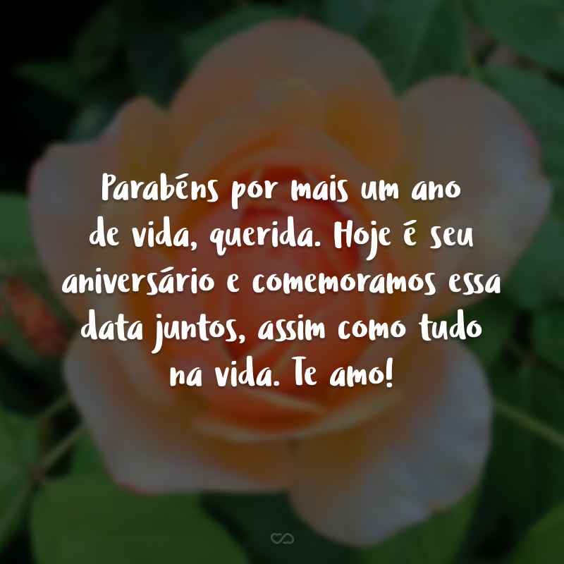 Parabéns por mais um ano de vida, querida. Hoje é seu aniversário e comemoramos essa data juntos, assim como tudo na vida. Te amo!