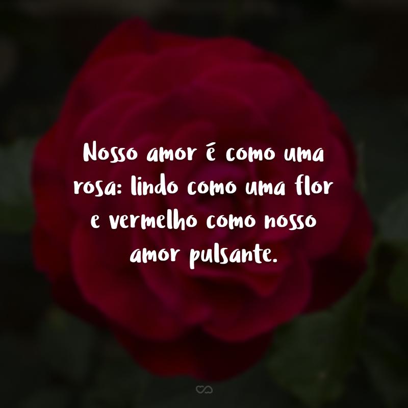Nosso amor é como uma rosa: lindo como uma flor e vermelho como nosso amor pulsante.