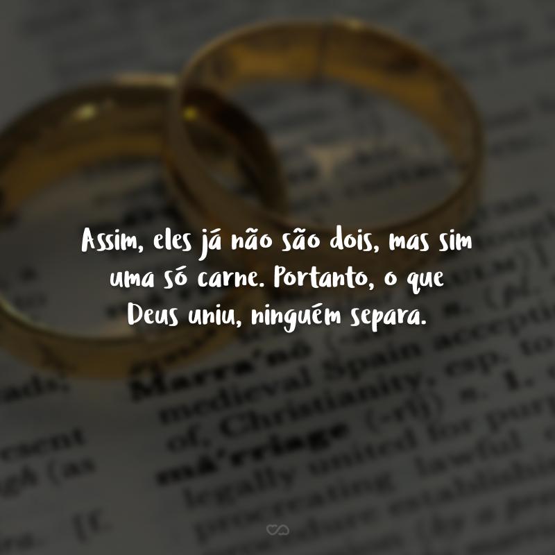 Assim, eles já não são dois, mas sim uma só carne. Portanto, o que Deus uniu, ninguém separa.