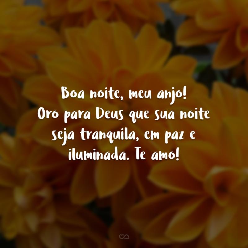 Boa noite, meu anjo! Oro para Deus que sua noite seja tranquila, em paz e iluminada. Te amo!